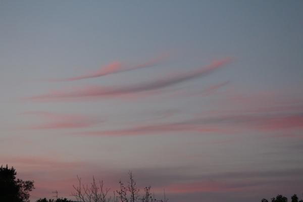 Σύννεφα και κλωνιά.