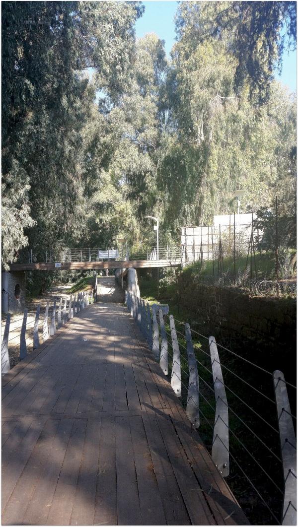 Η γέφυρα.